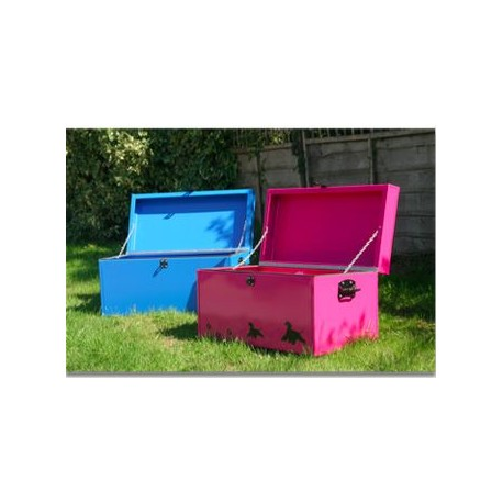 Large Coloured Storage Trunk